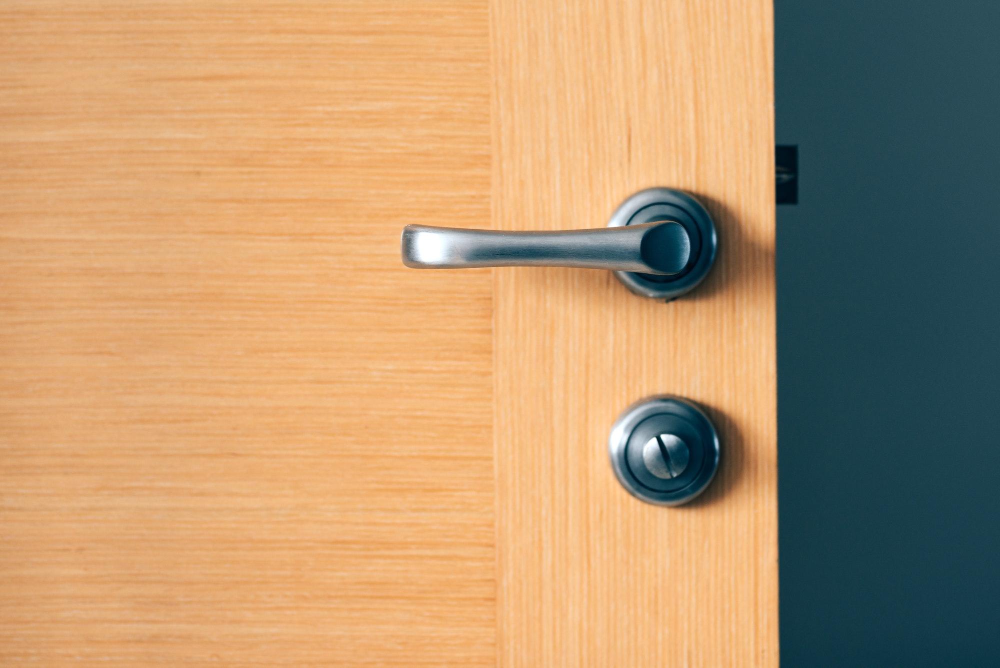 Detail of modern interior door